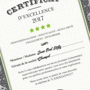certificat de caricaturiste professionel