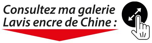 Titre; consltez ma galerie Lavis encre de Chine