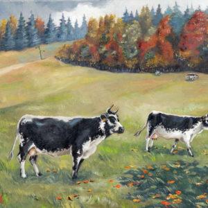 Vaches Vogiennes 1